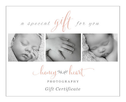 Honey Heart Photography Baby Gift Registry Gift Certificate